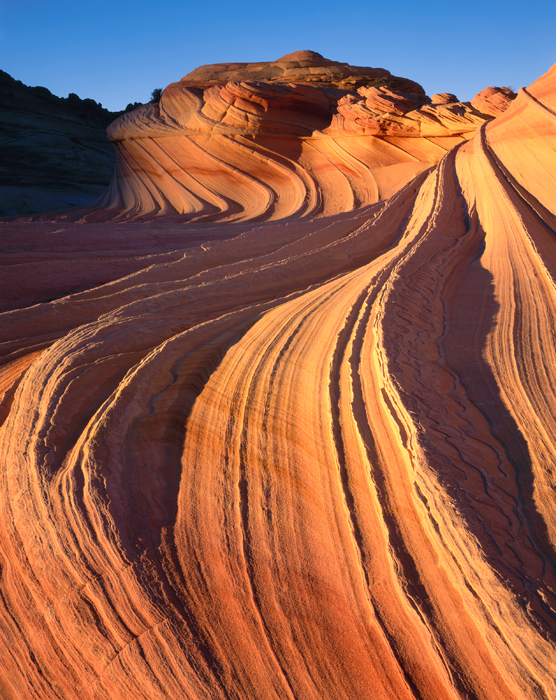 The Wave Paria Plateau Vermilion Cliffs, Arizona - Tirage Cibachrome