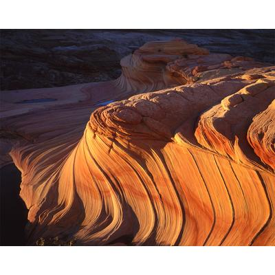 The Wave Vermilion Cliffs, Arizona