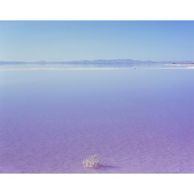 Stansbury Island, Great Salt Lake, Utah