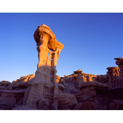 Alien, Bisti Badlands, New Mexico