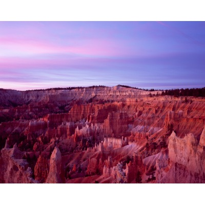 And the light comes thru, Bryce Canyon, Utah
