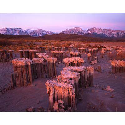 Tufa Mono Lake, California
