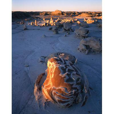 Eggs Shell Bisti Badlands, New Mexico